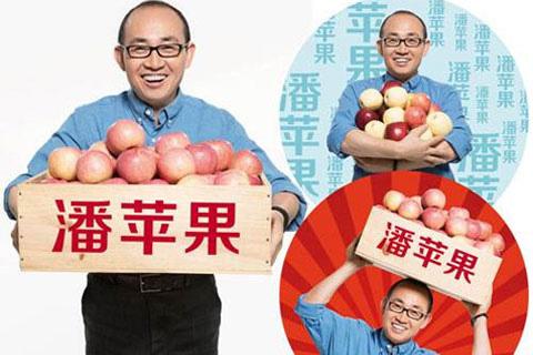 潘苹果品牌咨询