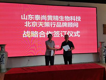 泰尚黃精生物科技與天策行品牌顧問簽約儀式在泰舉行  鄉村振興,一村一IP開啟新篇章